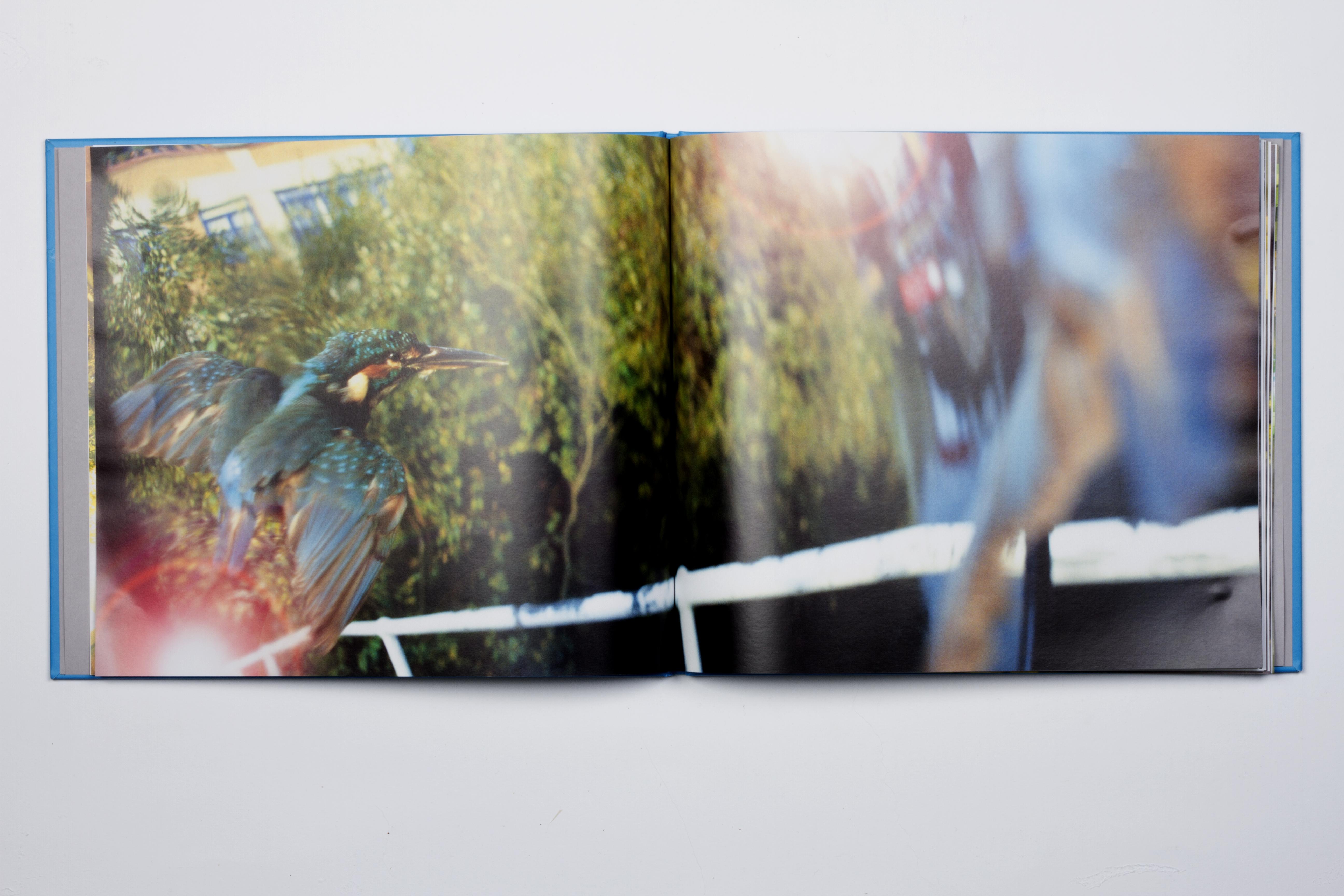 halcyon book spread 1 2015-01-27 01.38.01